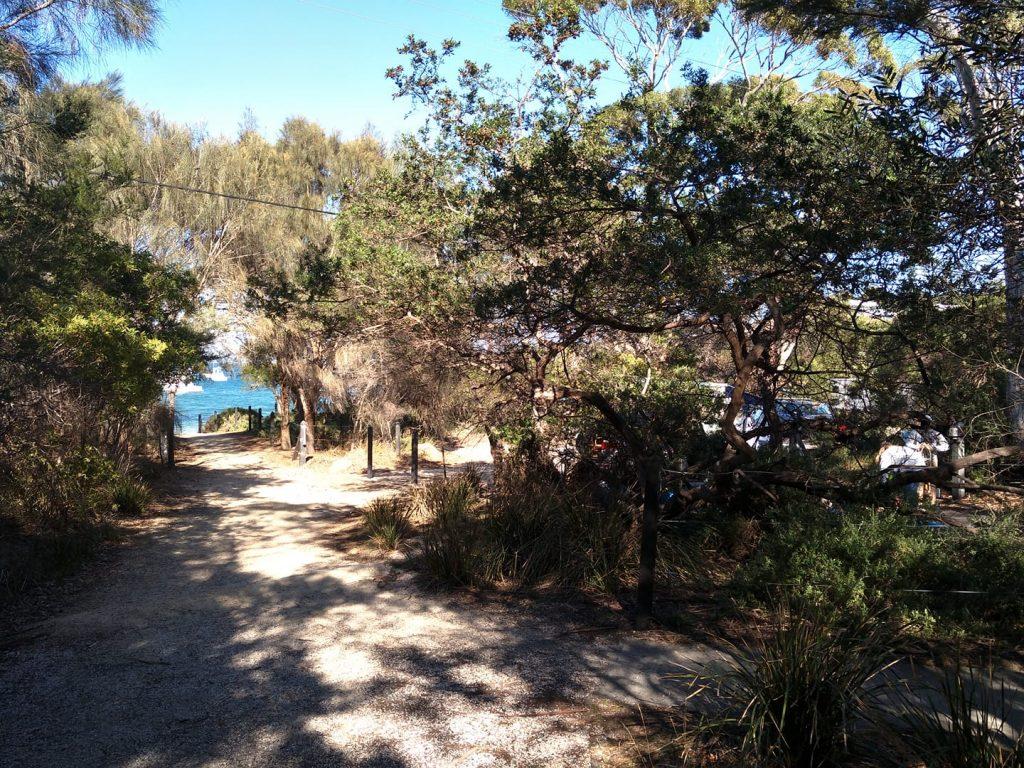 Freycient National Park campground