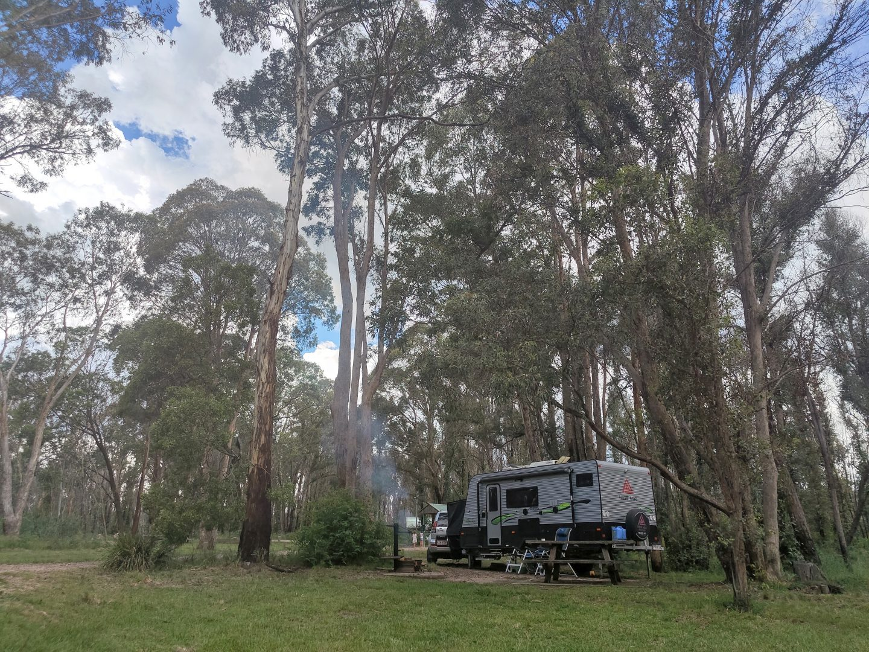 native dog campground