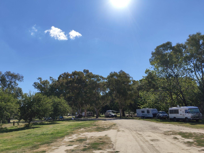 morleys creek free camp gundagai